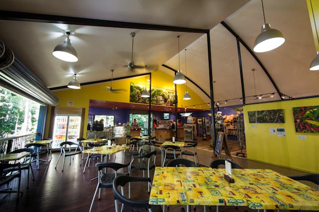 Coffee Shop - Daintree Discovery Centre